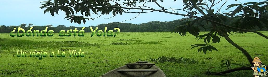 ¿Dónde está Yola?