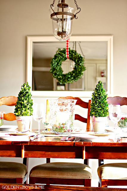 Christmas Dining with hurricane chandelier and preserved boxwood wreath and trees-www.goldenboysandme.com