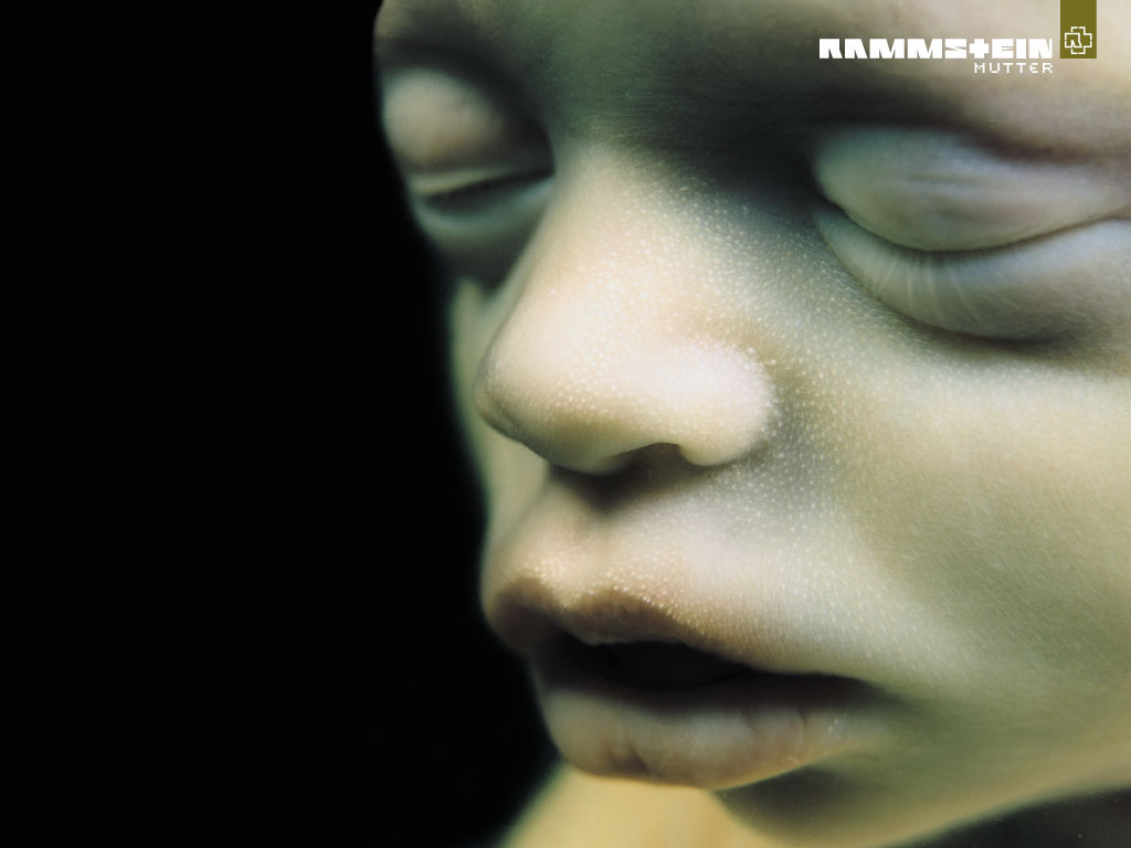 Rammstein|Discográfia Estudio|Mega