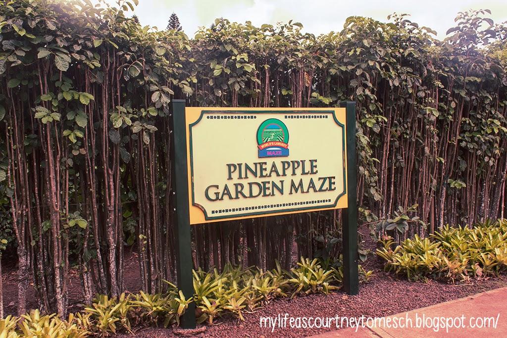 Oahu Hawaii Dole Plantation