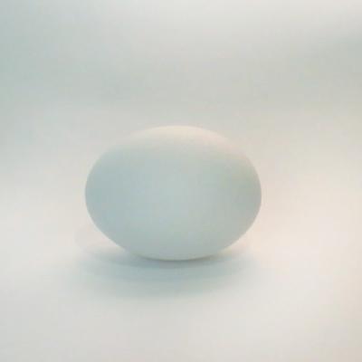 Økologiske egg krav