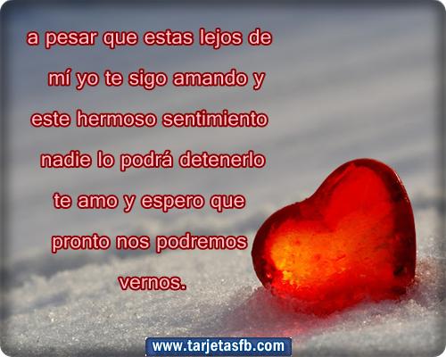 Top 10 Frases de Amor | 1001 Consejos