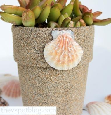 sand covered terra cotta pot