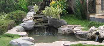 I Kolam Koi Contoh Design Kolam | Taman Saya