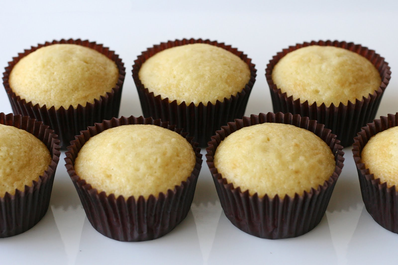 vanilla cupcakes without baking powder