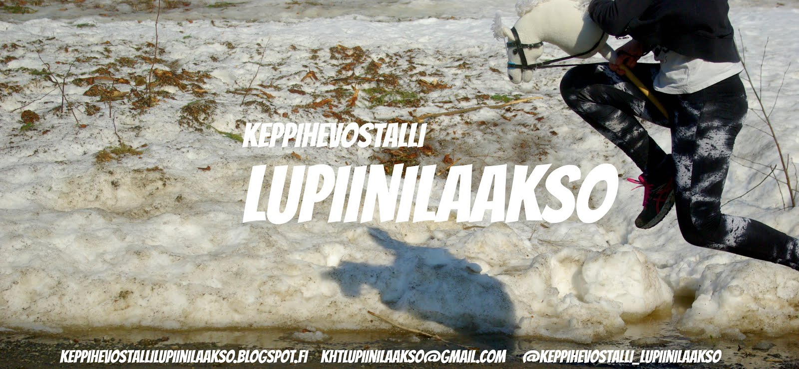 Keppihevostalli Lupiinilaakso