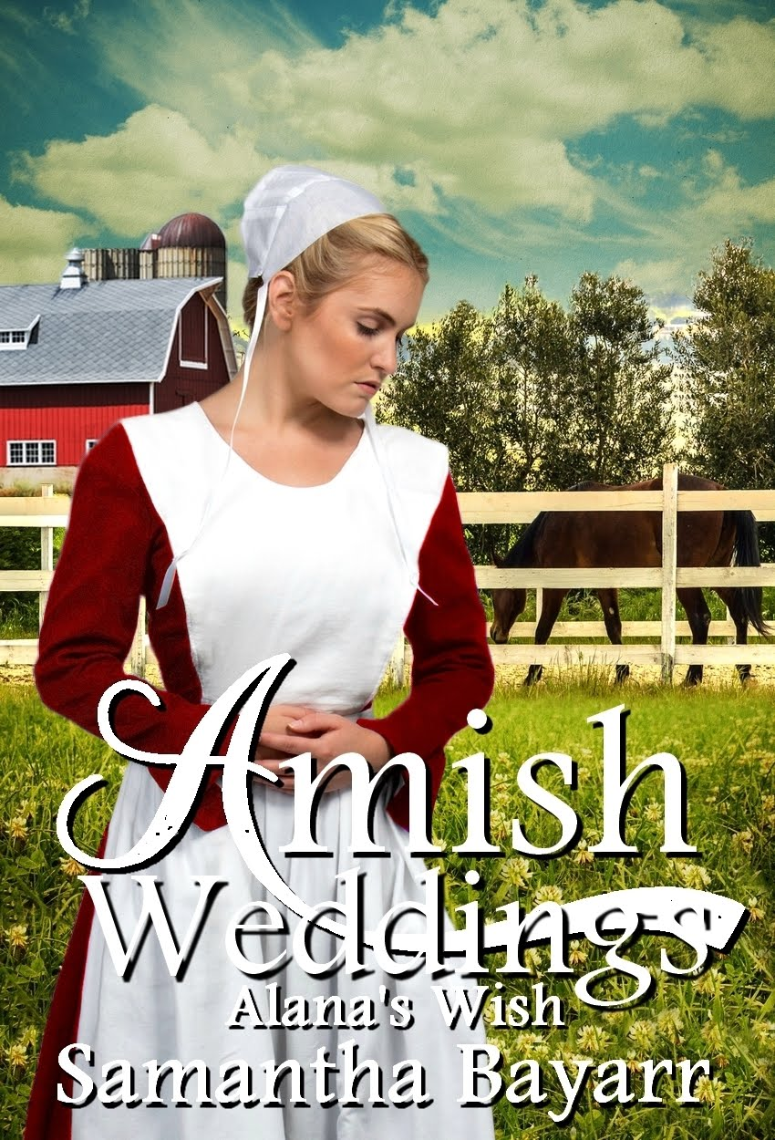 Amish Weddings book 4