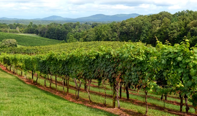 Frogtown Cellars, Dahlonega, Georgia