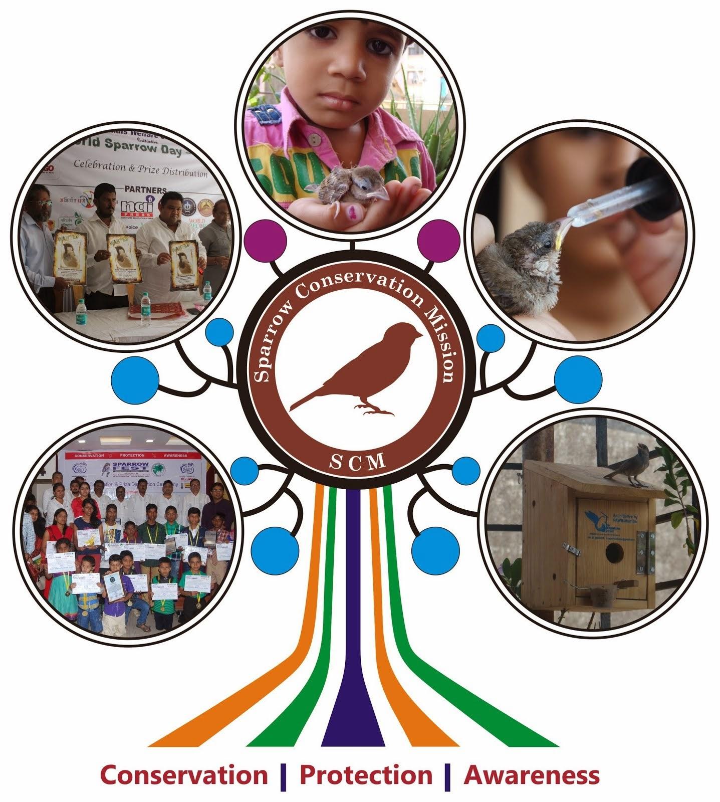 Visit Sparrow Conservation Mission Blog