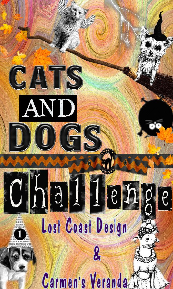 Dogs and Cats Challenge