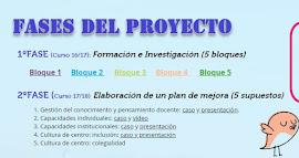 Proyecto Capacidad Profesional Docente