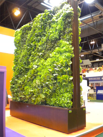 El zorro protector huerto vertical jardines verticales for Plantas jardin vertical exterior