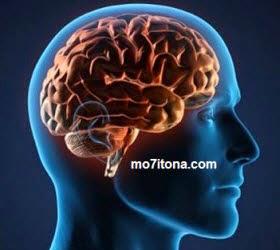 كيف تحمي دماغك وتحافظ عليه؟