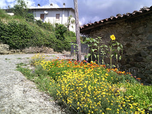 Villa Collemandina (foto ap)