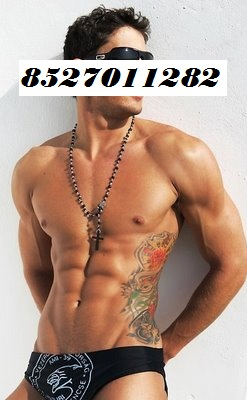 gay a olbia gay male escort service