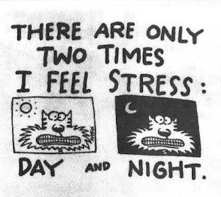 Makanan Yang Dapat Merunkan Kadar Stress