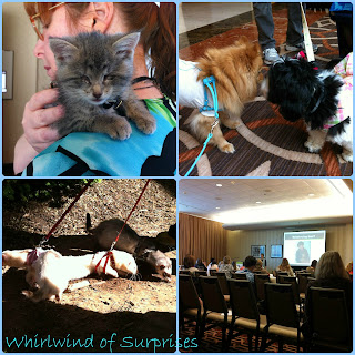 New and old friends and sessions at #BlogPaws