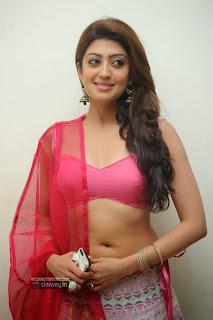 Pranitha-Stills-at-Attarintiki-Daredi-Thank-You-Function