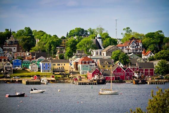 voglio andare a vivere qua