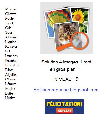 Solution 4 Images 1 Mot - Gros Plan Niveau 9