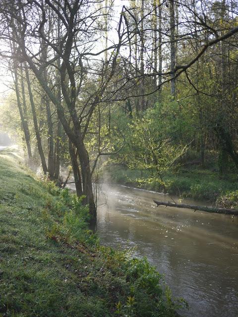 Le Canut forme l'étang du Val, à Saint-Just 35