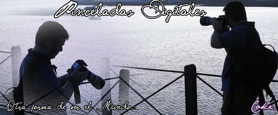 Pinceladas Digitales