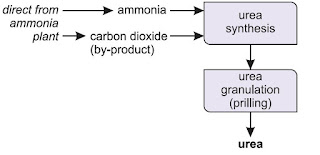 Aplikasi Kimia : Pembuatan Pupuk Urea Skala Industri dan Kegunaannya