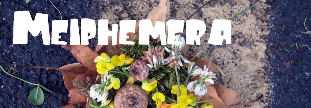 Meiphemera