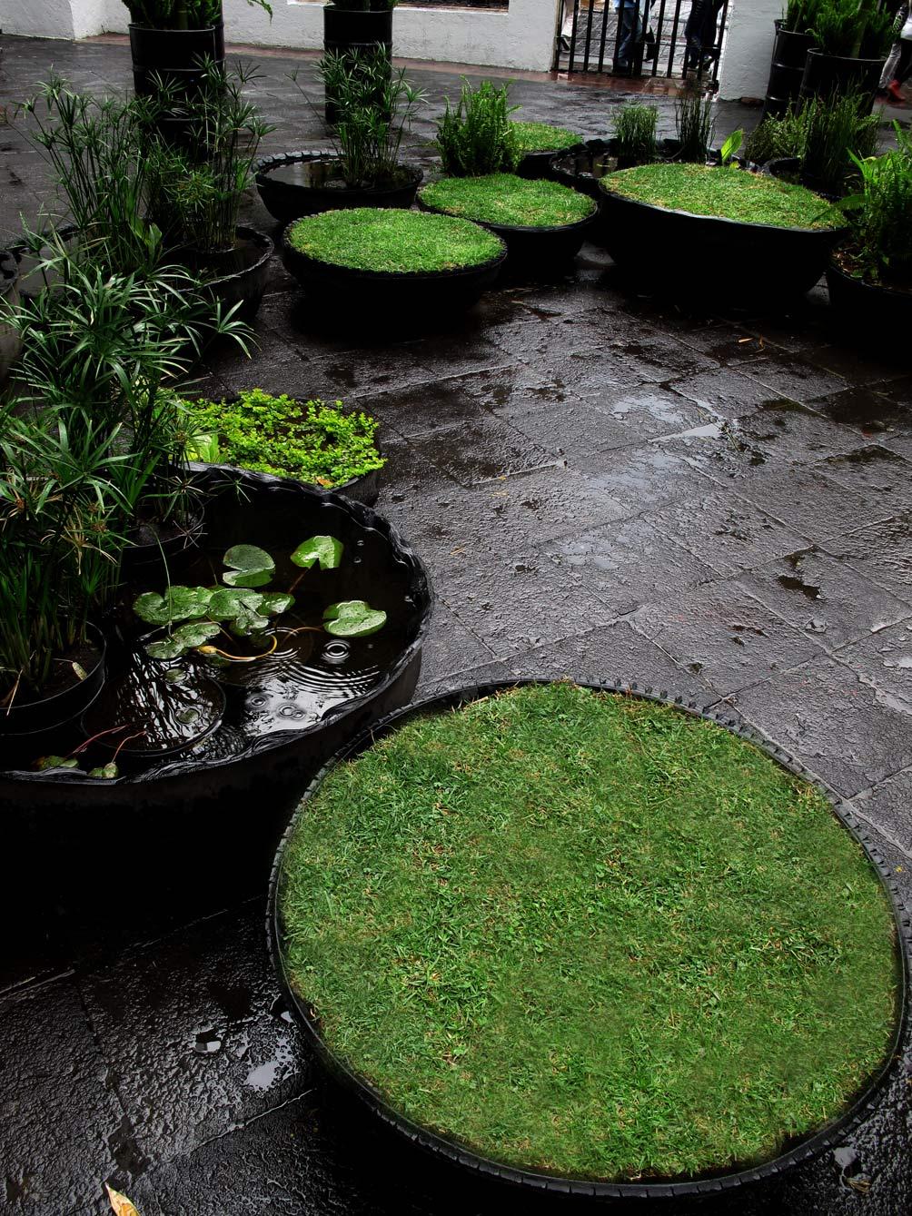 Ecococos aqu y ahora jard n radial ciudad de mexico for Jardines artificiales