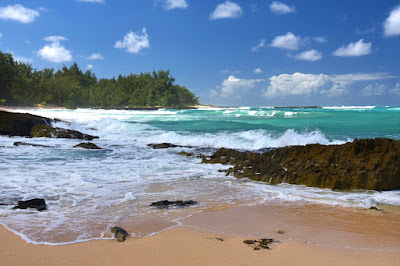 Beautiful Hawaii Beaches