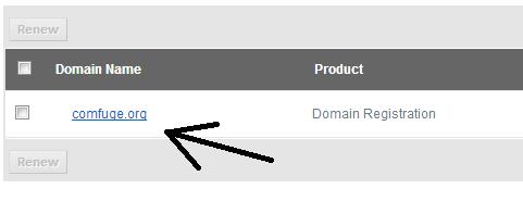 Your registered Domain in Bigrock