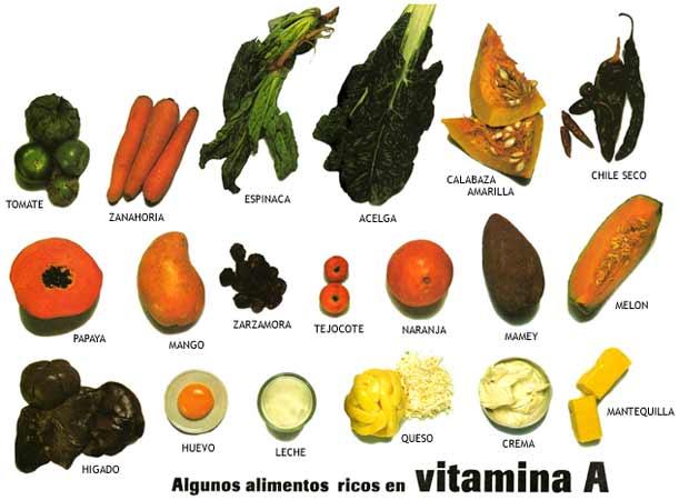 Del campo de la chinantla al plato propiedades de nuestros alimentos locales - Que alimentos contienen vitamina c ...