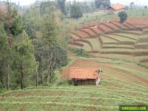 Gunung Tilu Pangalengan