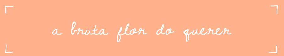 A bruta flor do querer