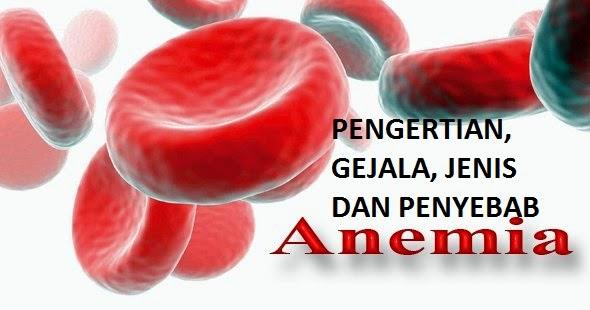 Pengertian Anemia, Gejala, Penyebab dan Pengobatan