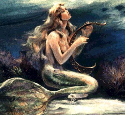 Mermaid Sirena Sirena or Mermaid