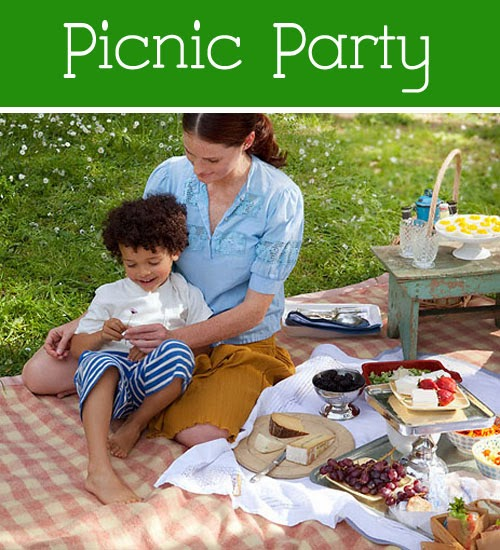 Essay about picnic party