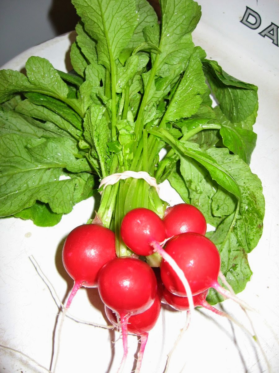 Eat all parts of these radishes