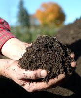 Cara Pembuatan Kompos dari Sampah Organik