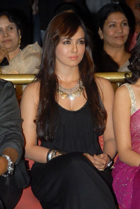 sana khan at mr nokia audio launch, sana khan new cute stills