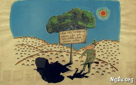 Biếm họa lâm tặc chặc phá rừng