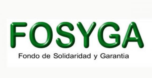 tip consulta Fosyga - verificar online base de datos afiliados cuentas y subcuentas colombia 2015