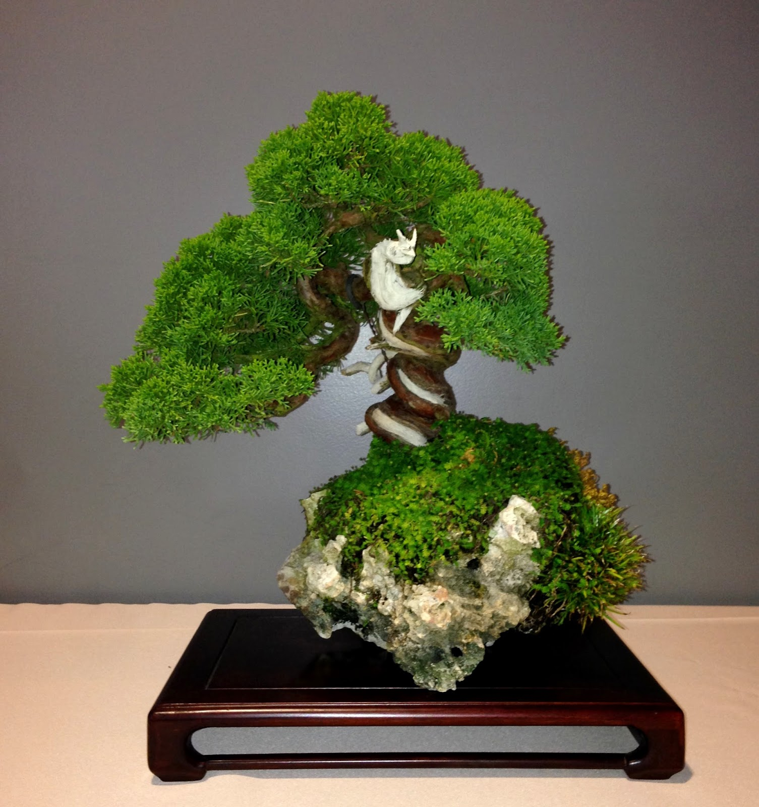 Nebraska Bonsai Society June 2014