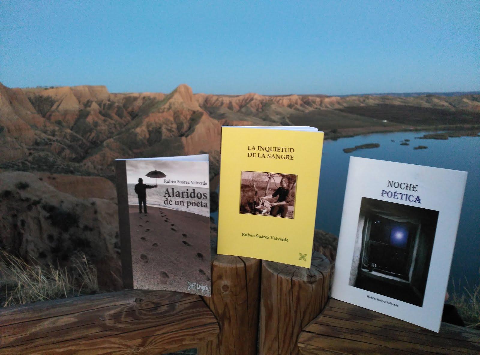 Mis tres libros