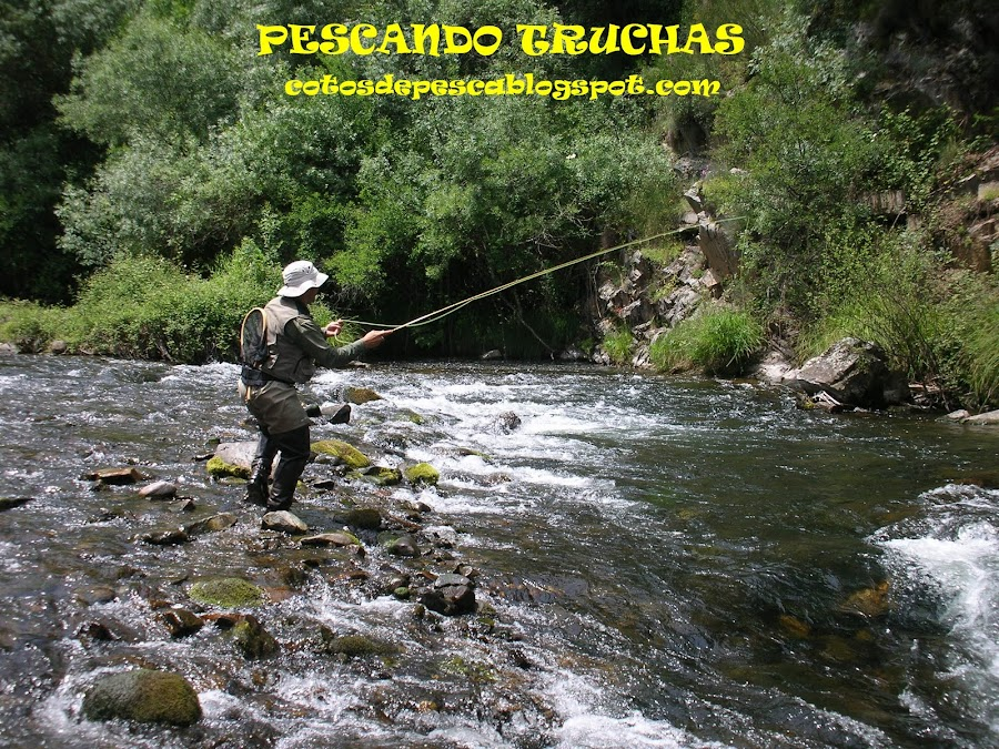 PESCANDO TRUCHAS