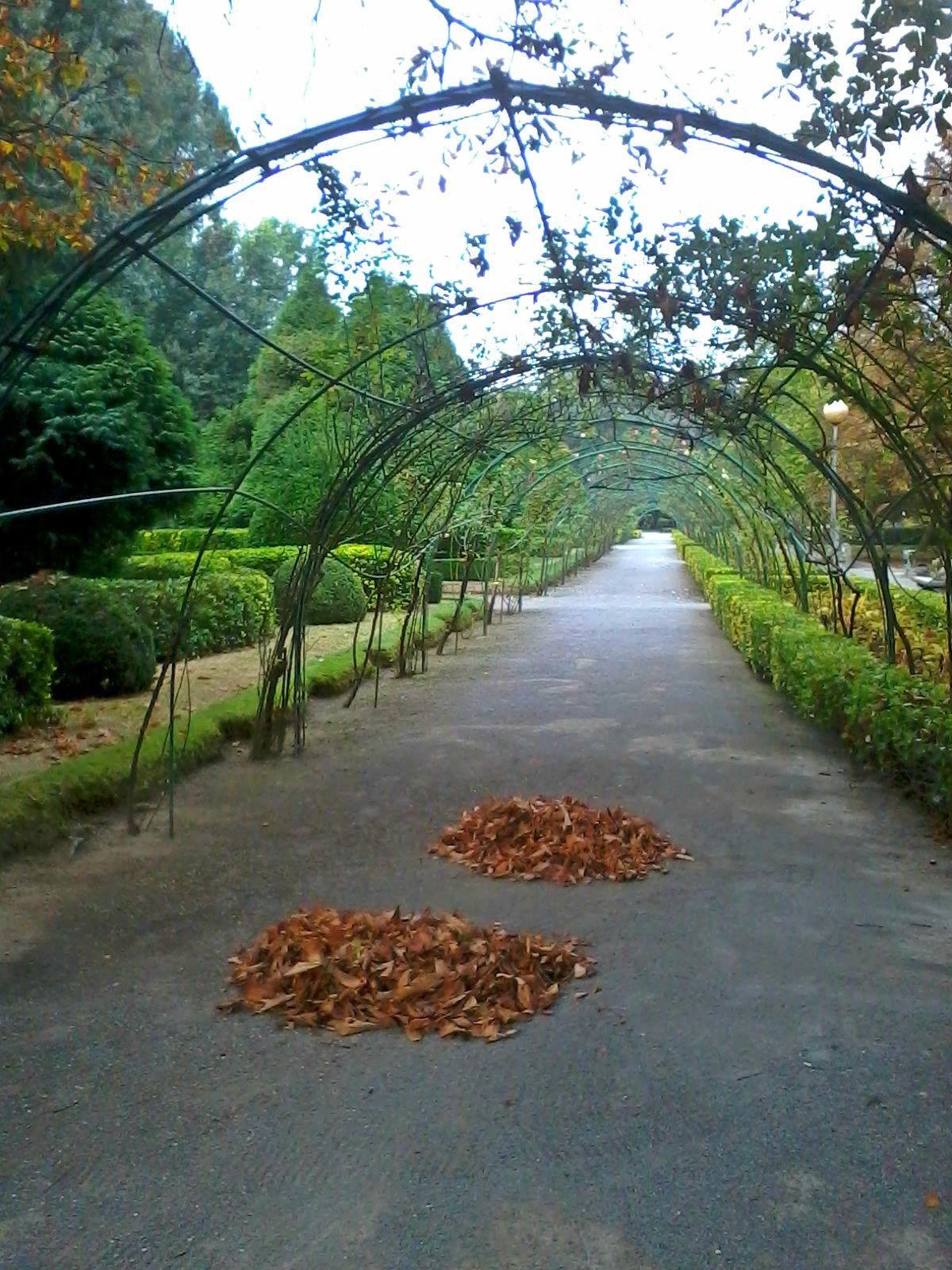 Bloggertrotters otoño gijón parque isabel