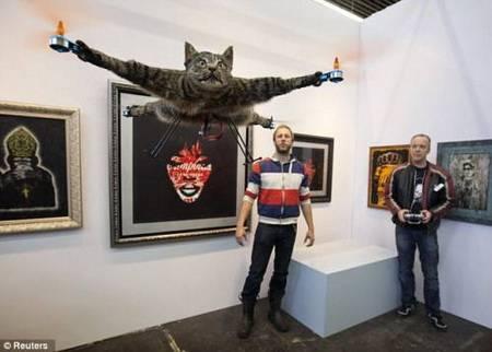 kucing terbang-1