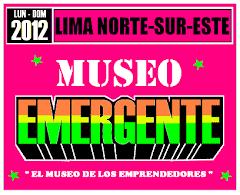 MUSEO EMERGENTE
