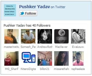 Twitter Follower Like Box
