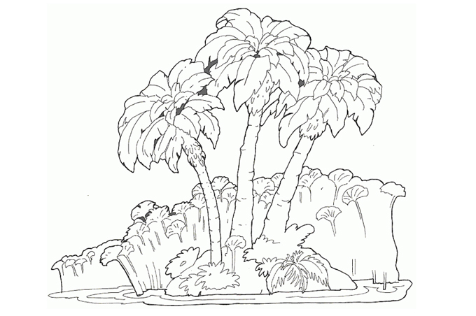 Image of an island filled with trees and terrestrial plants crayon